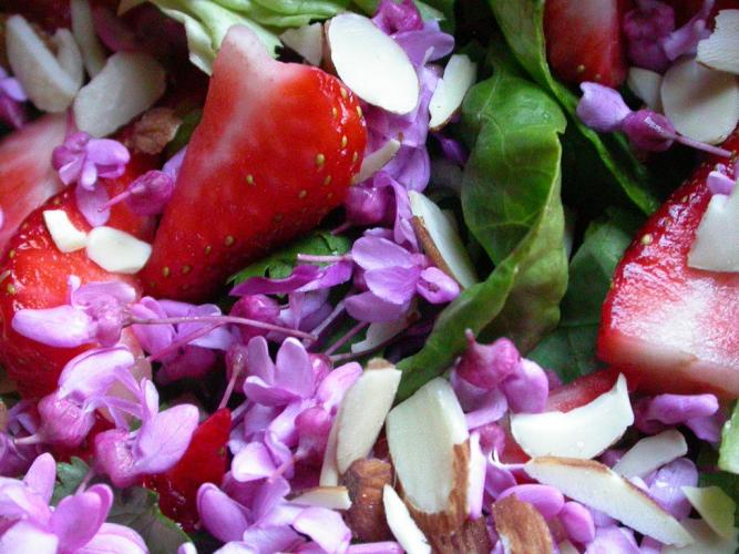 Spring salad with redbud blossoms, strawberries, spinach, and sliced almonds