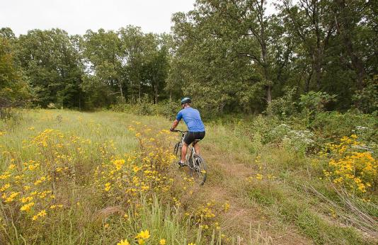 Cyclist on Trail at Canaan Conservation Area